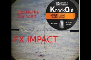 بالصور رماية برصاص سلق JSB KnockOut Slugs 25.4 gr 0 8 310x205