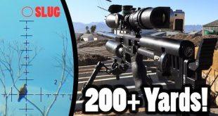 200 ياؤدة وازيد - صيد المسدس الهوائي PCP تجاوز الحدود