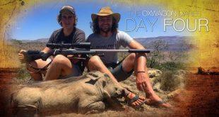 بالصور هؤلاء الخنازير الثلاث ذهبوا الى الجنة | يوميات عربة الجزء 4 0 261 310x165