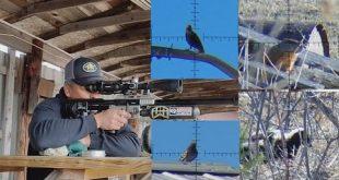 بالصور الطلقة بالطلقة دقة اصابة عيار 7.62 امباكت اف اكس 0 340 310x165