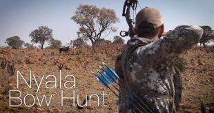 بالصور الصيد باستخدام القوس في نيالا بجنوب افريقيا 0 92 310x165